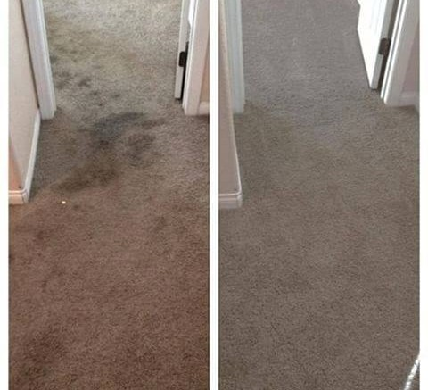 Clean Your Carpet Often For A Healthy Home