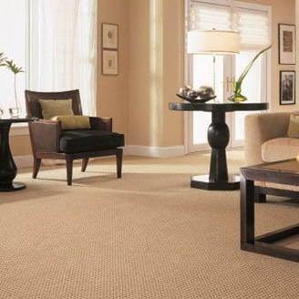 NaturalDry Carpet Cleaning Las Vegas - Tile | Upholstery